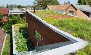 toit végétal avantages